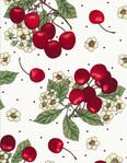 Превью fruit-c6426-white (500x643, 186Kb)