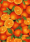 Превью fruit-c7747-orange (497x700, 469Kb)