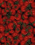 Превью chef-c8077-red (500x643, 369Kb)