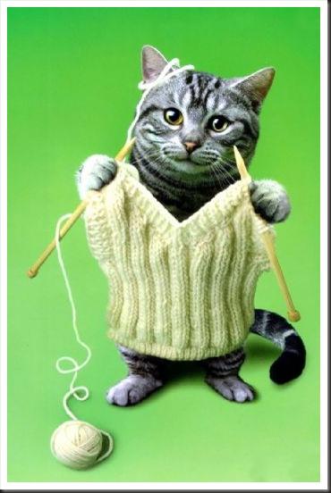knitting-cat-thumb (370x552, 46Kb)