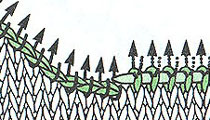 0-9аа (210x120, 25Kb)