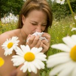 allergiya-150x150 (250x250, 9Kb)