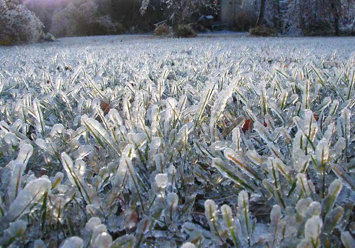 лед на траве/4348076_ledyanoi_dojd_4 (700x489, 70Kb)