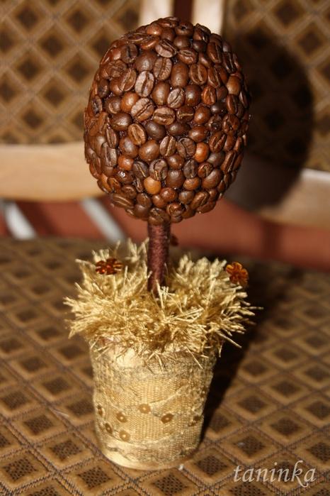 Дерево из кофейных зерен своими руками мастер фото 397