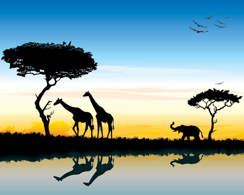 safari-in-africa-silhouette-of-wild-animals-reflection-in-water (500x400, 35Kb)