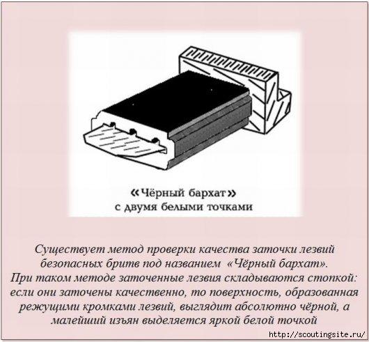 Stimka_003 (530x491, 111Kb)