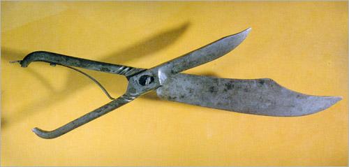 Большие ножницы со съемными лезвиями. Италия, 1890 (500x239, 33Kb)