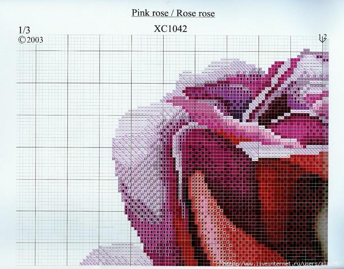 DMC-PinkRose2 (700x547, 360Kb)