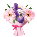 Ирисы гербер.роз. (150x150, 31Kb)