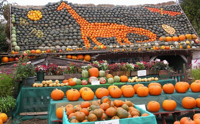 slindon-pumpkin-festival-1 (700x435, 193Kb)