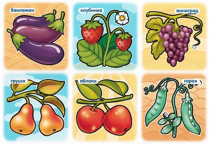 овощи-4 (700x480, 164Kb)