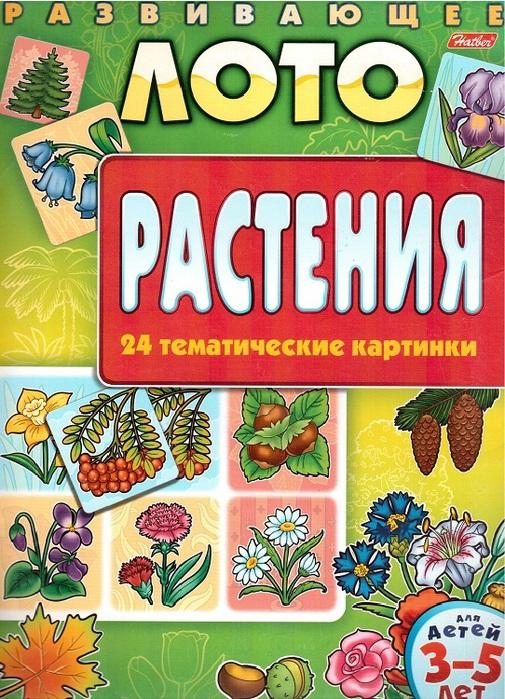 Растения.обл.-1 (505x700, 200Kb)