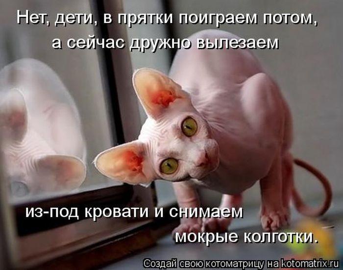 kotomatrix_30 (700x551, 56Kb)