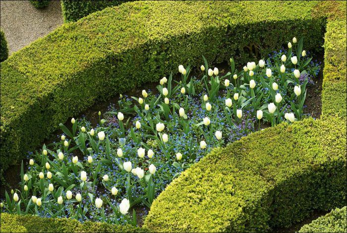 most_romantic_gardens_22 (700x469, 129Kb)