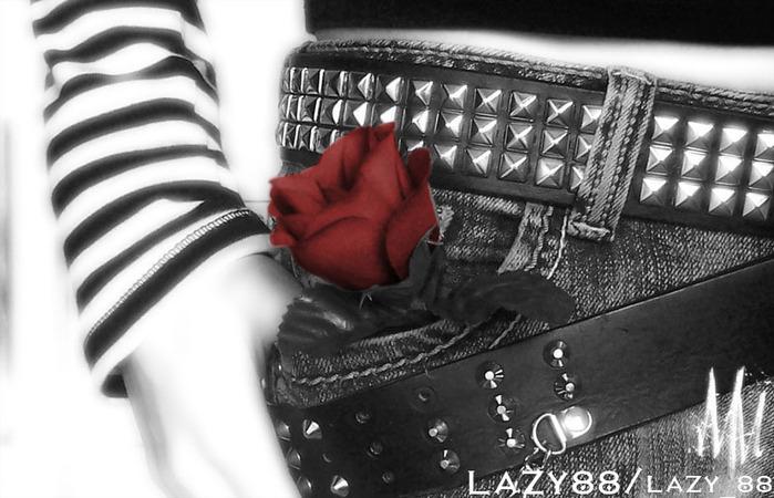 belt-love-red-rose (700x450, 96Kb)