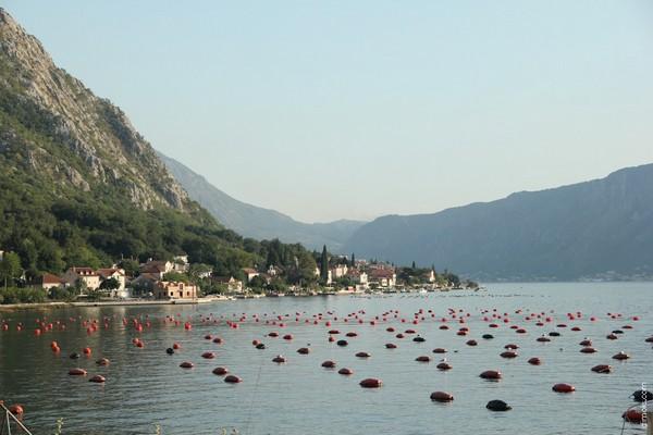 Фотопутешествие по Черногории 19 (600x400, 56Kb)