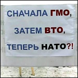 http://img0.liveinternet.ru/images/attach/c/3/84/298/84298204_gmovtonato.jpg