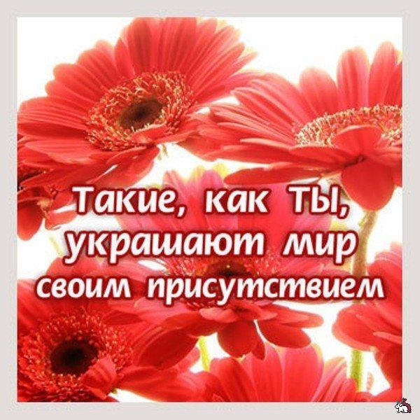 1287182702_vadke_50 (600x600, 79Kb)