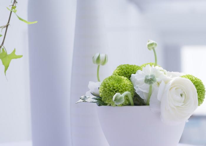 цветы5 (700x496, 43Kb)