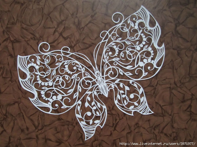 """阿纳斯塔西娅的令人惊讶美丽的""""纸蝴蝶"""" - maomao - 我随心动"""