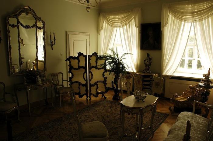 Дворец Рачиньских в селении Рогалин 20245