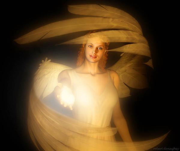 Angel(experement) (600x503, 46Kb)