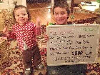 Пользователи Facebook помогли детям выпросить у отца кошку (340x255, 34Kb)