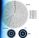 Превью 051 (490x472, 199Kb)