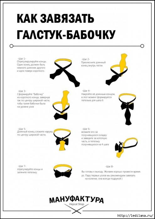 3925311_Kak_zavyazat_galstykbabochky (494x700, 166Kb)
