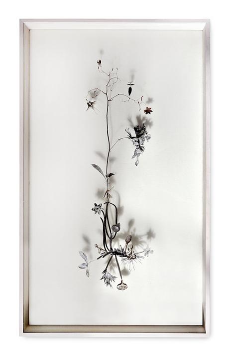 bloem-001-a (466x700, 173Kb)