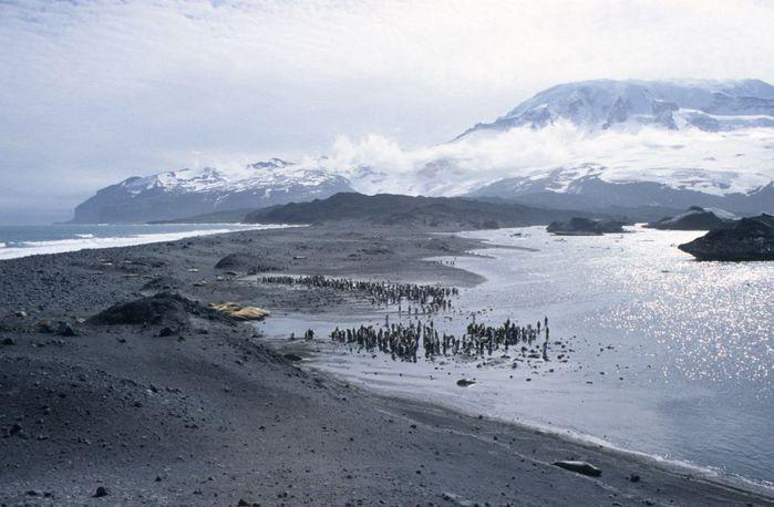 5814203_antarctic_1 (700x458, 52Kb)