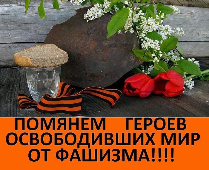 5168383_getImage_15 (700x570, 146Kb)