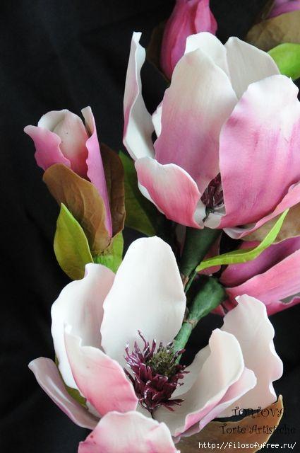 Gumpaste Magnolia Tutorial (425x640, 122Kb)