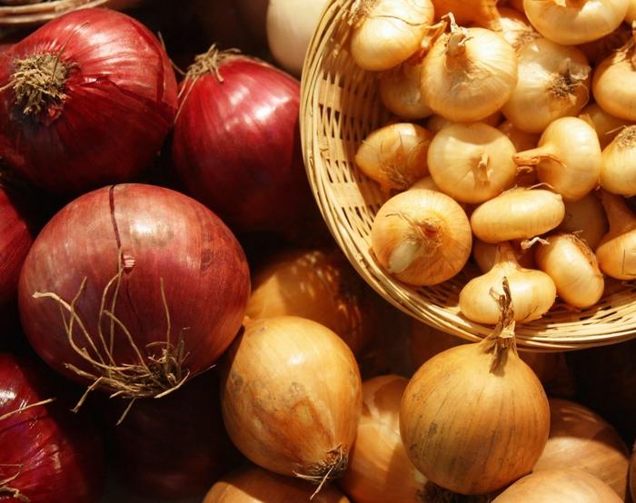 5721122_onion (700x554, 292Kb)