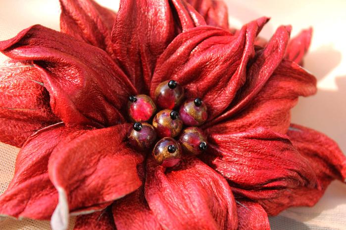 красный цветок 1-2 (700x466, 525Kb)