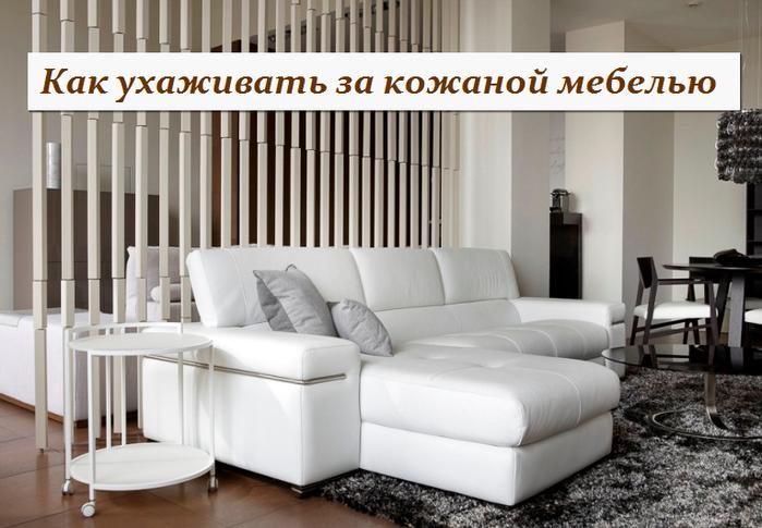 3256587_yhod_za_kojanoi_mebelu (700x485, 393Kb)