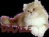 http://img0.liveinternet.ru/images/attach/c/4/122/636/122636514_0_11b9a2_27a4860b_XS.png