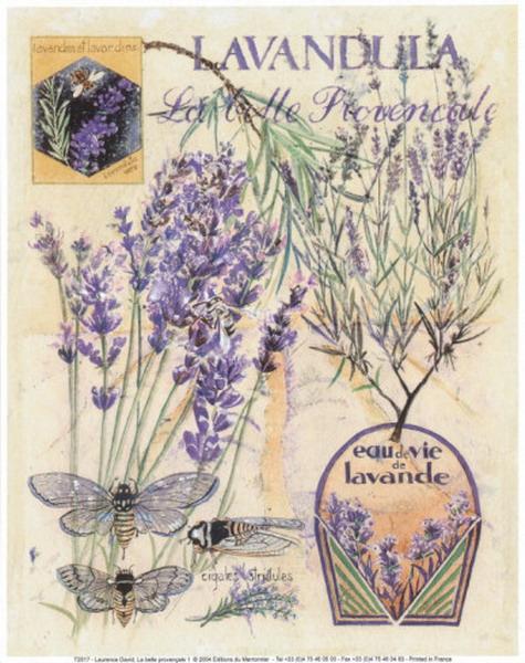 79654584_large_lavenderhomedecoratingideas65 (475x600, 295Kb)