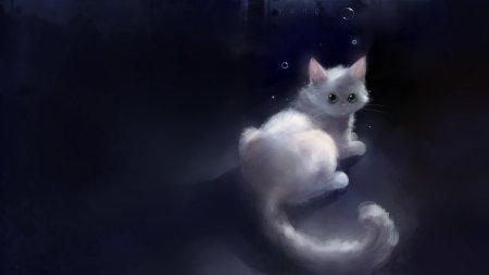 1377613397_white-kitty-animal-anime-apoffis-cat-original-1440x2560 (450x253, 33Kb)