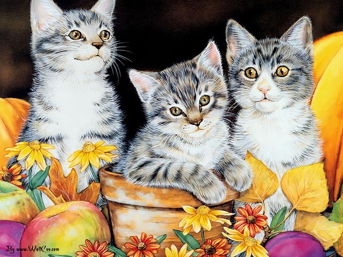wallcoo.com_Maday_Jane_2007_Kittens_Calender-11 (700x525, 585Kb)
