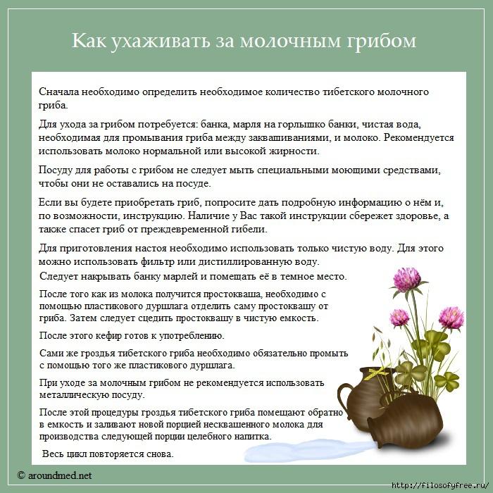 1431850928_Kak_uhazhivat__za_molochnuym_gribom (700x700, 381Kb)