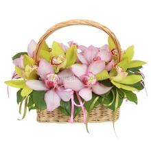 korzinka-orhidej_(1) (220x220, 42Kb)