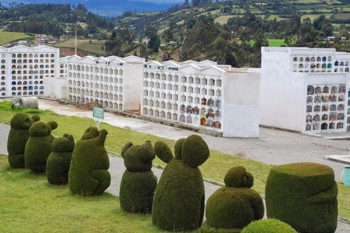 садово-парковый дизайн на кладбище тулькан эквадор 2 (700x467, 401Kb)