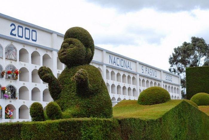 садово-парковый дизайн на кладбище тулькан эквадор 9 (700x467, 366Kb)