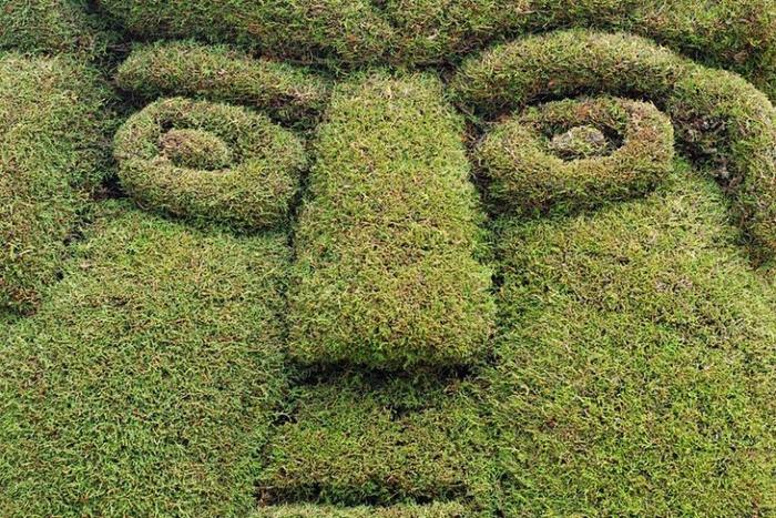 садово-парковый дизайн на кладбище тулькан эквадор 10 (700x467, 551Kb)