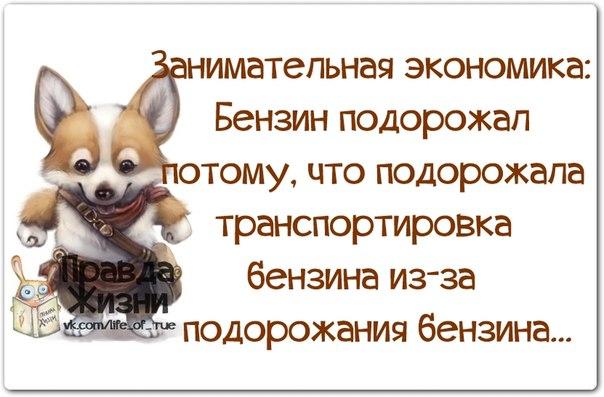 1399149685_frazochki-19 (604x397, 198Kb)
