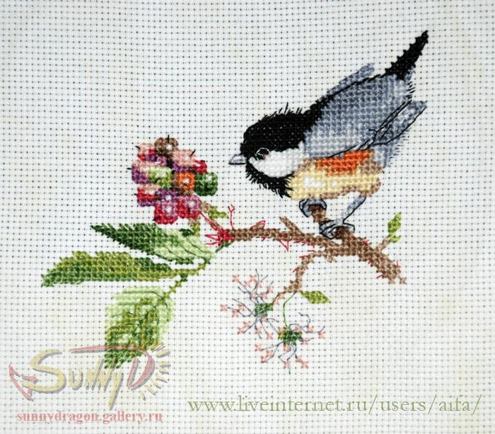 Вышивка крестом цветы и птицы схемы
