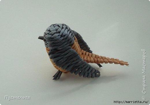 Плетение из газетных трубочек. Птичка СИНИЧКА (27) (520x364, 63Kb)