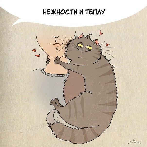 чему поучиться у кошек (604x604, 221Kb)