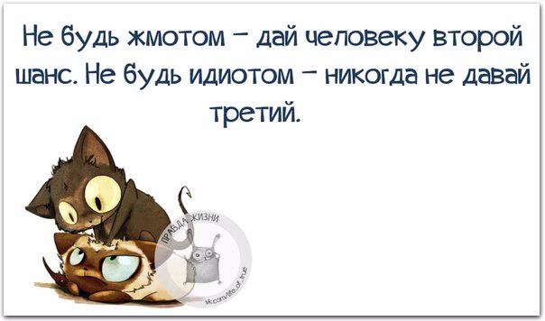 1432150694_frazki-1 (604x356, 120Kb)